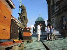 Besucherführung auf dem Berliner Domdach zu den Honigbienen