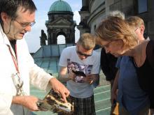Domimer Uwe Marth zeigt Besuchern seine Honigbienen auf dem Berliner Domdach