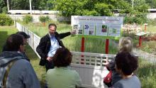 Infotafel des 1. Berliner Wildbienenschaugarten in Treptow
