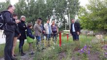 Führung durch den 1. Berliner Wildbienenschaugarten in Treptow